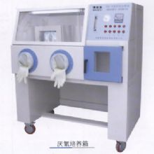 上海博泰厌氧培养箱YQX-I型 900×650×650mm