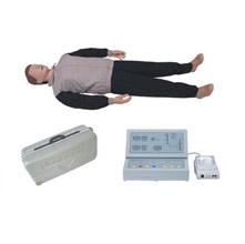 按压吹气假人/高级自动电脑心肺复苏模拟人 KAR/CPR400S