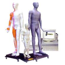 人体针灸穴位发光模型 JAW-100E