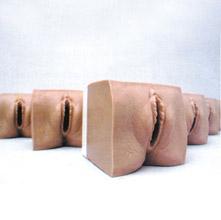 高级产前宫颈变化与产道关系模型 KAR/9A