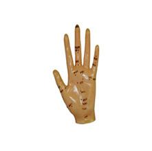 手针灸模型 13cm