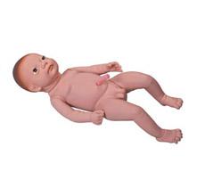 高级出生婴儿附脐带模型 KAR/Y3