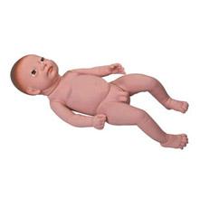 高级出生婴儿模型 KAR/Y4
