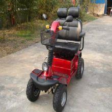 WISKING 上海威之群电动代步车 wisking-4031型威凯