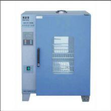 上海博泰电热恒温干燥箱GZX-DH·202-AO-BS型 250×250×250mm