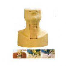 高级环甲膜穿刺及气管切开插管训练模型 KAS-53允许用户在确定动脉位置时确定正确的切口位置
