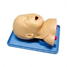高级婴儿气管插管训练模型 KAS-15-2婴儿的舌,口咽, 会厌,喉,声带和气管的真实解剖