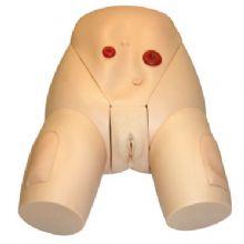 高级整体女性导尿模型 KAS-E2